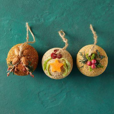 Bird Seed Ornaments, Set of 3