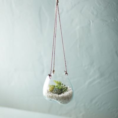 Hanging Glass Planter