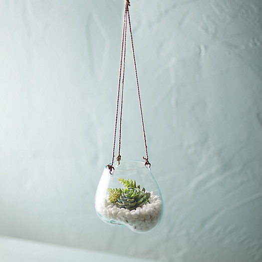 View larger image of Hanging Glass Planter