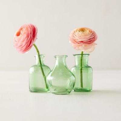 Bottle Bud Vases, Set of 3