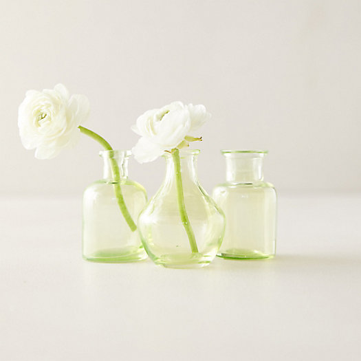 View larger image of Bottle Bud Vases, Set of 3