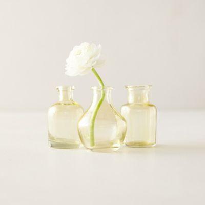 Bottle Bud Vases, Set of 3