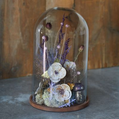 Domed Glass Cloche with Wood Base