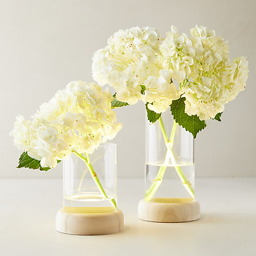 View larger image of LED Vase on Wood Stand