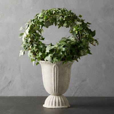 English Ivy Hoop Topiary, Metal Urn