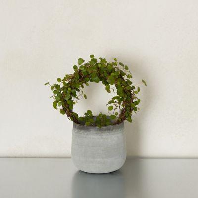 Angel Vine Hoop Topiary, Metal Pot
