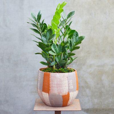 Metallic Ceramic Pot