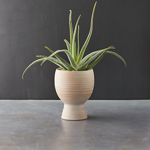 """View larger image of Ceramic Footed Pot, 8"""""""