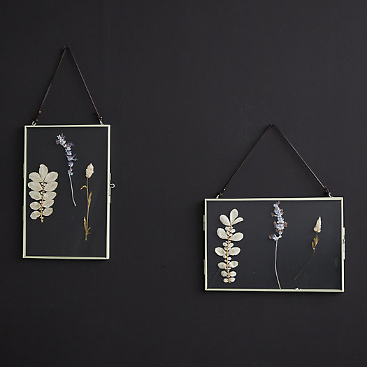 View larger image of Pressed Flowers Hanging Frame