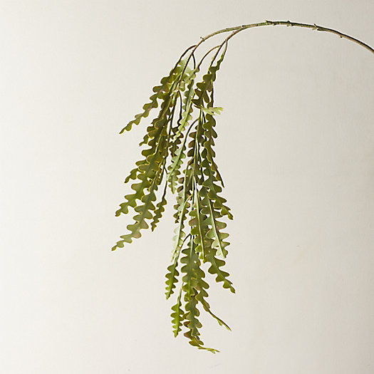 View larger image of Faux Hanging Plant
