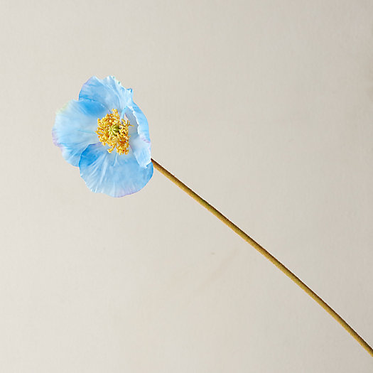 View larger image of Faux Blue Poppy Stem