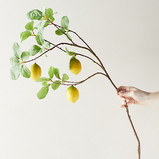View larger image of Faux Lemon Tree Branch