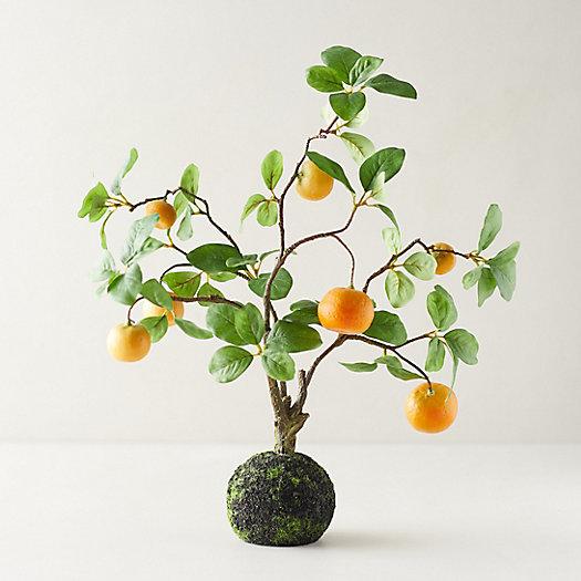 View larger image of Faux Citrus Plant