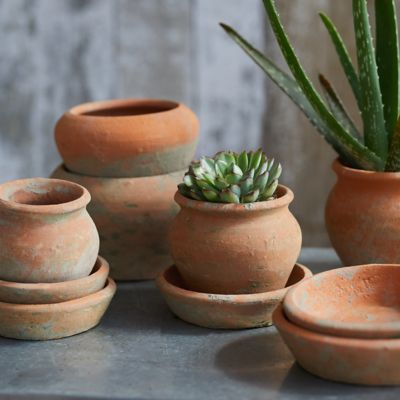 Earth Fired Clay Natural Curve Pots + Saucers, 3 Sizes Set