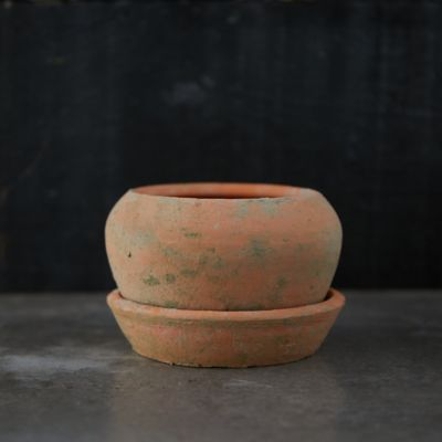 Earth Fired Clay Natural Curve Pots + Saucers, 2 Sizes Set
