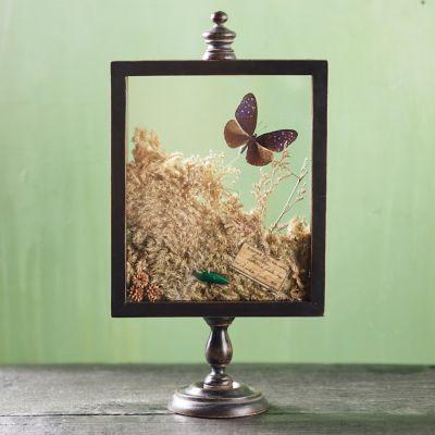 Natural Botanicals Curio Display Frame