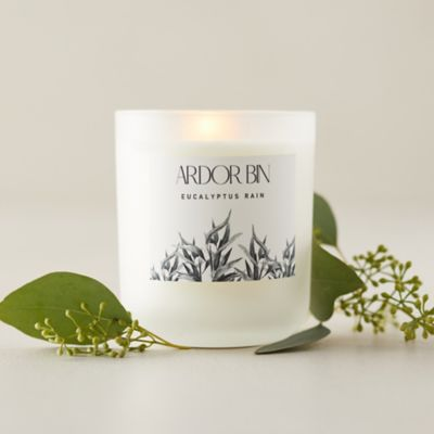 Ardor Bin Candle, Eucalyptus Rain