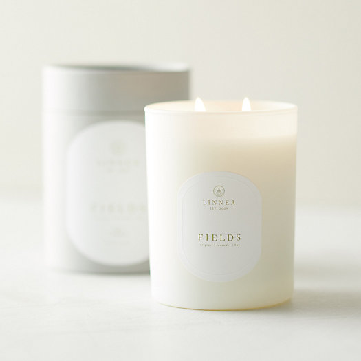 View larger image of Linnea Candle, Fields