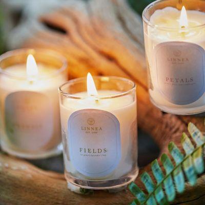 Linnea Candle, Fields