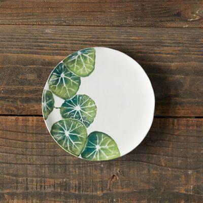 Green Leaves Salad Plate