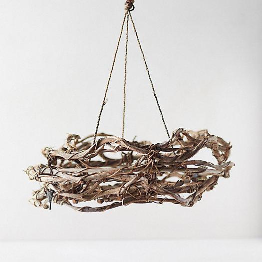 View larger image of Hanging Crazy Vine Trellis