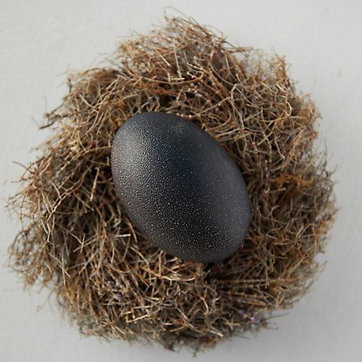 View larger image of Emu Egg