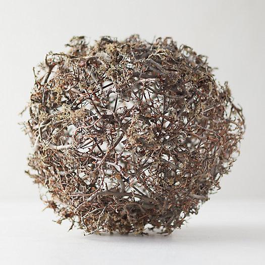 View larger image of Wild Bonsai + Reindeer Moss Sphere