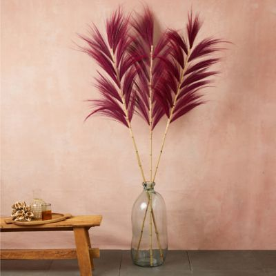 Preserved Oversized Stems, Set of 3