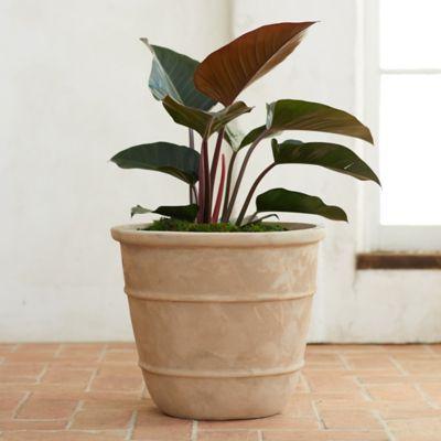 Aged Ridge Ceramic Planter