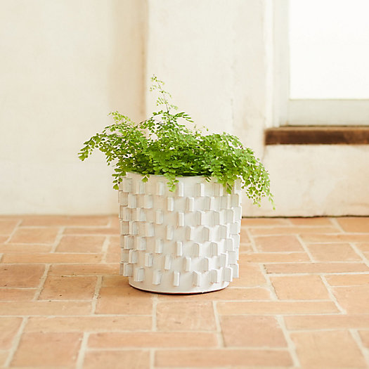 View larger image of White Slides Ceramic Pot, 13""