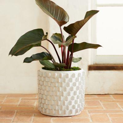"""White Slides Ceramic Pot, 16"""""""