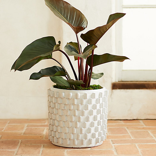 View larger image of White Slides Ceramic Pot, 16""