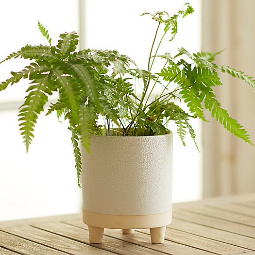 """View larger image of Ceramic Footed Pot, 6"""""""