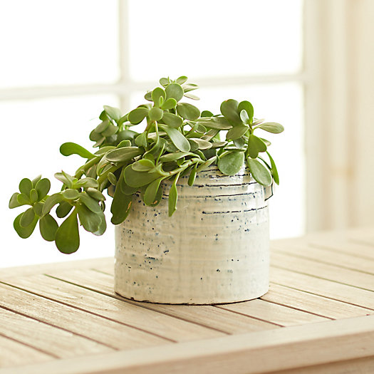 View larger image of Ceramic Paint Pot Planter