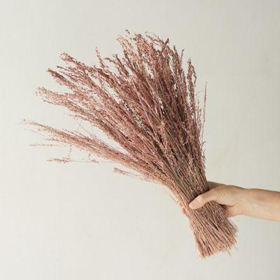 Preserved Star Grass Bunch