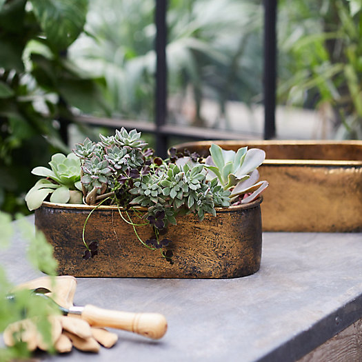 View larger image of Aged Metal Trough Planter