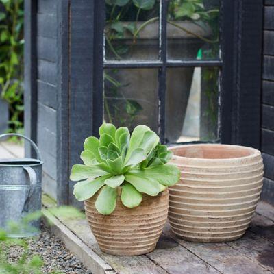 Antiqued Ring Ceramic Jar Planter