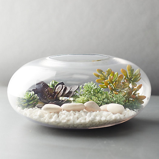 View larger image of Sphere Terrarium