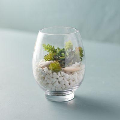 Rounded Vase Terrarium