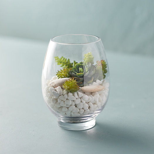 View larger image of Rounded Vase Terrarium