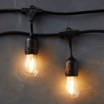 Commercial LED Light Strand, Black