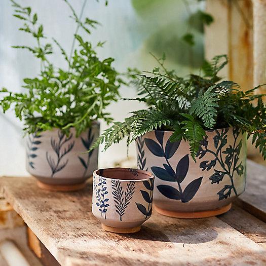 View larger image of Ceramic Botanics Footed Planter