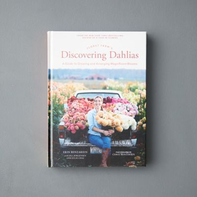 Discovering Dahlias