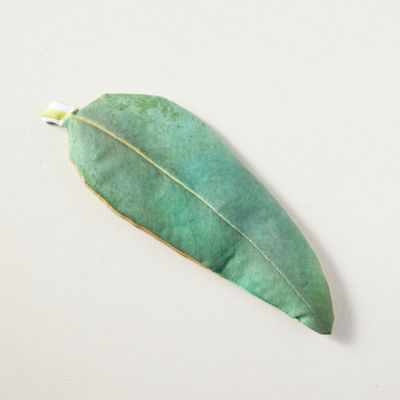 Eucalyptus + Peppermint Headache Relief Pillow