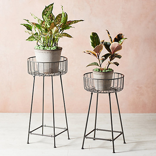 View larger image of Wire Basket Plant Stand