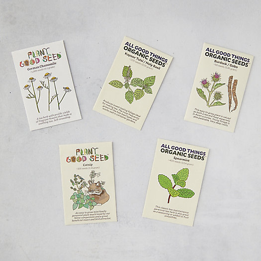 View larger image of Herbal Tea Seeds, 5 Packets