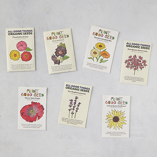 View larger image of Flower Seed Collection, 7 Packets