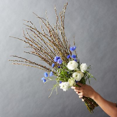 Fresh Blue Cornflower, White Ranunculus, Willow Bouquet