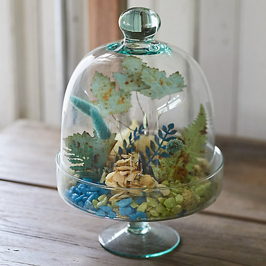 View larger image of Footed Dome Cloche Terrarium