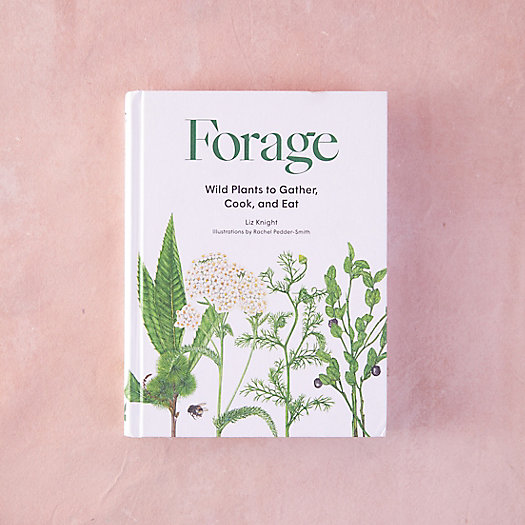 View larger image of Forage